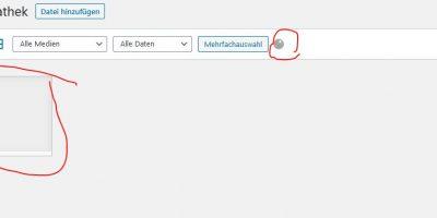 Lösung WordPress: Medien bzw. Mediathek lädt endlos, nur Listen Modus funktioniert – Advanced Custom Fields und  Advanced Custom Fields: qTranslate im Einsatz