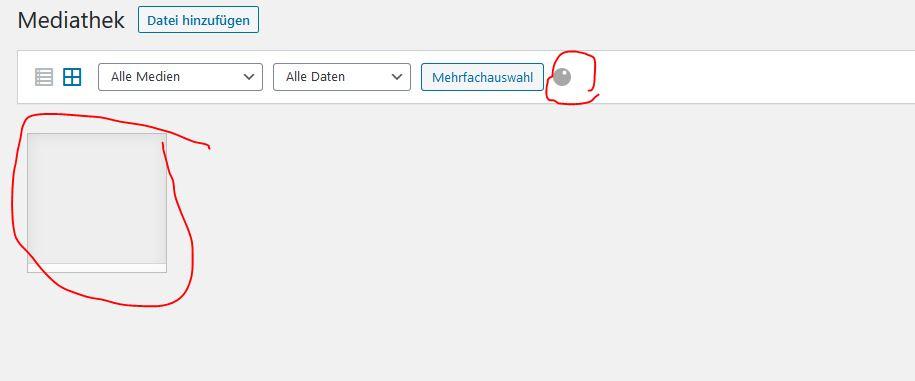 Mediathek defekt WordPress qtranslate Customfields